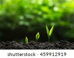 plant a trees | Shutterstock . vector #459912919