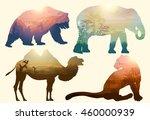 Vector Double exposure. Bear, elephant, camel and Leopard, wildlife concept   Shutterstock vector #460000939