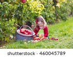 child picking apples on a farm... | Shutterstock . vector #460045789