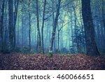 grunge textured autumn season... | Shutterstock . vector #460066651