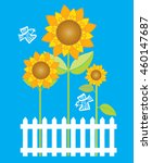 sunflowers behind the white... | Shutterstock .eps vector #460147687