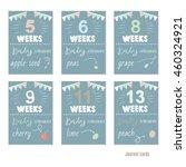 pregnancy 5 13 weeks vector... | Shutterstock .eps vector #460324921