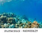 underwater world | Shutterstock . vector #460400629