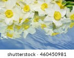 flowers with reflection in pure ... | Shutterstock . vector #460450981