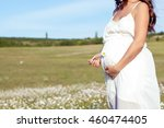 Young Beautiful Pregnant Woman...