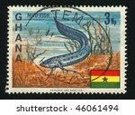 Small photo of GHANA - CIRCA 1966: African Lungfish, circa 1966.