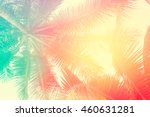 coconut tree at tropical coast... | Shutterstock . vector #460631281