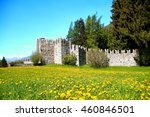 castle | Shutterstock . vector #460846501