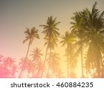 coconut tree in thailand  made... | Shutterstock . vector #460884235