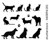 Stock vector vector silhouette of pet cats and dogs 460896181