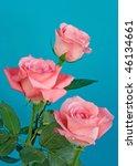 three roses | Shutterstock . vector #46134661