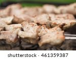 preparing shashlik on a picnic... | Shutterstock . vector #461359387
