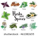 Herbs  Condiment And Spices...