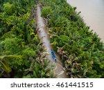 Mekong Delta Landscape From...