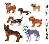 vector illustration of dog... | Shutterstock . vector #461453107
