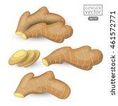 ginger isolated on white... | Shutterstock .eps vector #461572771