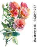 red roses  watercolor  drawing... | Shutterstock . vector #462044797