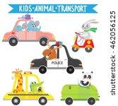 Funny Animals On Transport....