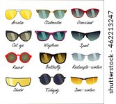 vector set types of glasses... | Shutterstock .eps vector #462213247