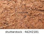 the macro shot of coconut texture - stock photo