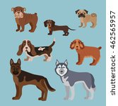 dog breed silhouette for dog... | Shutterstock . vector #462565957