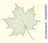 skeleton maple leaf isolated.... | Shutterstock .eps vector #462631987