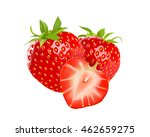 realistic strawberry... | Shutterstock .eps vector #462659275