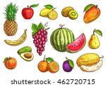 fruits set. sketch hand drawn... | Shutterstock .eps vector #462720715