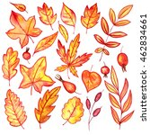 set of autumn watercolor leaves ... | Shutterstock . vector #462834661