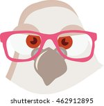 Pigeon Vector. Dove with stylish glasses. Illustration in cartoon style. Ready for package design, icon, logo design and others. Vector image of funny pigeon. Geek boy. Bird with glasses. Animal. - stock vector