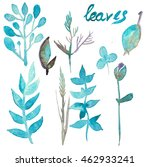 watercolor herbs  leaves and... | Shutterstock . vector #462933241