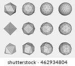 set of  geometric vector mesh... | Shutterstock .eps vector #462934804