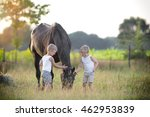 Small photo of children fondle their horse