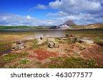 rye bread baked underground in... | Shutterstock . vector #463077577