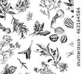 vector background sketch herbs. ... | Shutterstock .eps vector #463164584