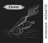 vector sketch of carrots... | Shutterstock .eps vector #463166735