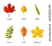 Autumn Leaves Set With Names O...