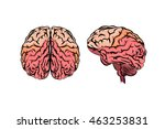object brain. vector | Shutterstock .eps vector #463253831