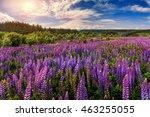 fantastic landscape. ideal sky... | Shutterstock . vector #463255055