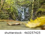 blurred leaf and waterfall  ...   Shutterstock . vector #463257425