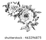 Hand Drawn Garden Rose Flower...