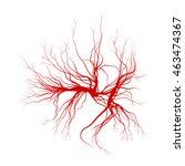 human veins  red blood vessels... | Shutterstock .eps vector #463474367