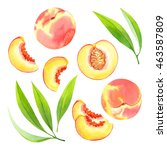 isolated watercolor peaches | Shutterstock . vector #463587809
