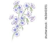flax  linum usitatissimum ... | Shutterstock .eps vector #463643351