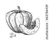 pumpkin vector drawing.... | Shutterstock .eps vector #463786439