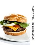cheeseburger on a plate | Shutterstock . vector #46396843