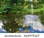 Ornamental Pond And Water...
