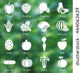 fruits and vegetables. set 1.... | Shutterstock .eps vector #464063639