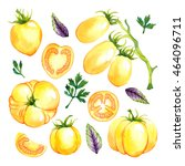 watercolor vegetables set with... | Shutterstock . vector #464096711