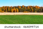 green field with colorful trees ... | Shutterstock . vector #464099714
